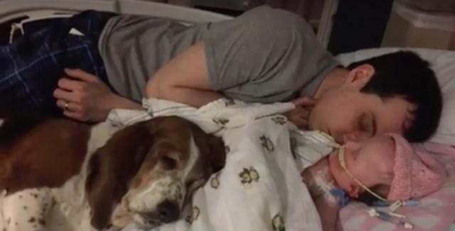 Todos juntos para dar carinho à bebê. (Foto: Reprodução / Youtube / ABC)