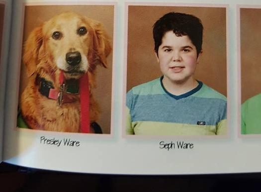 A cachorra Presley e seu companheiro Seph. (Foto: Reprodução / Facebook)