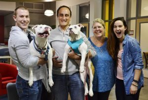 Batty finalmente encontrou uma família que vai lhe dar todo o amor e cuidado que ele merece.(Foto: Reprodução / Sacramento SPCA)