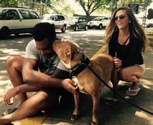 Apesar das poucas chances que tinha de ser adotada, a cadela logo chamou a atenção do jogador Ronnie Stanley. (Foto: Reprodução / BARCS Animal Shelter)