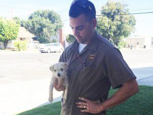 O motorista Jason Harcrow viu o cão ser abandonado e sabia que tinha que fazer algo. (Foto: Reprodução / Hughson Police Department)