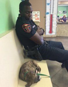 A partir do momento que encontrou o cão, o oficial não saiu do seu lado. (Foto: Reprodução / Connie Johnson)