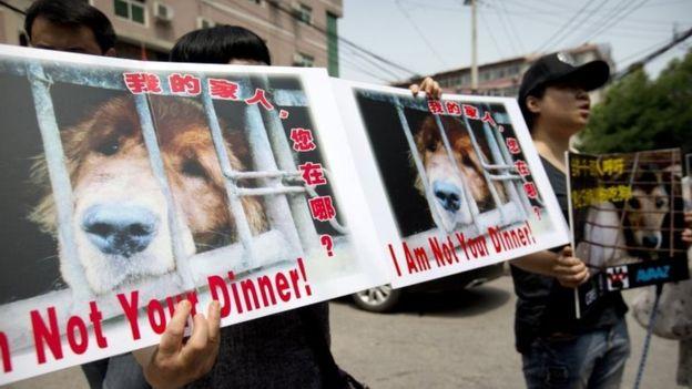 """Cartazes diziam """"Eu não sou seu jantar."""" (Foto: Reprodução / BBC UK)"""