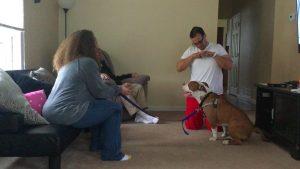 O cão já está bem adaptado e aprendendo novos comandos com a nova família. (Foto: Reprodução / Mr. Bones & Co.)