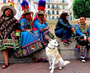 O cão adora viajar e conhecer pessoas. (Foto: Reprodução / Kaori Tomaru)