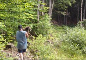 O cão foi parar em uma floresta muito distante de sua casa. (Foto: Conway Area Humane Society)
