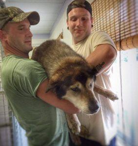 Após o resgate, Rocky e seu tutor logo se reencontraram. (Foto: Conway Area Humane Society)