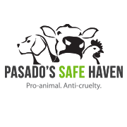 A Pasado's Safe Haven é um santuário que cuida e luta em favor dos animais. (Foto: Reprodução / Facebook Pasado's Safe Haven)