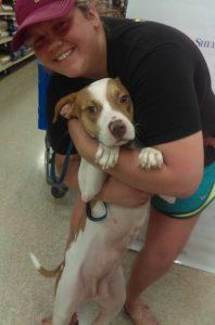 A cadela Ms. Jane foi um dos animais que finalmente teve o seu final feliz e ganhou uma mamãe. (Foto: Reprodução / Fort Worth Animal Shelter)