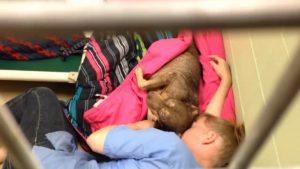 Ela estava ajudando a confortar o animal, que havia passado por uma cirurgia. (Foto: Reprodução / Conway Area Humane Society)