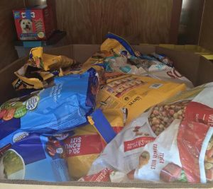 A organização sem fins lucrativos sobrevive de doações e com a ajuda de voluntários. (Foto: Reprodução / Facebook My Dog Eats First)