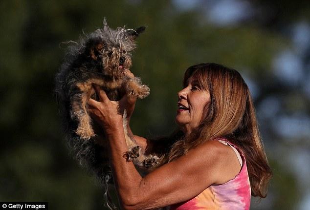 Yvonne Morones com seu cão Scamp. (Foto: Reprodução / Daily Mail UK)