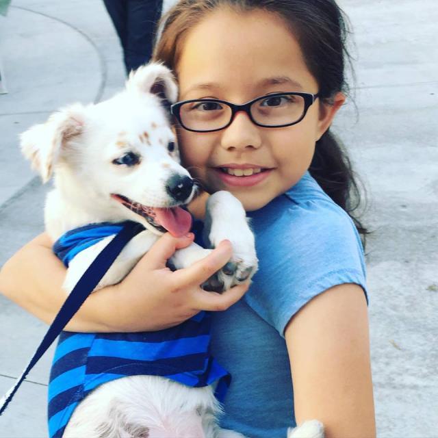 Julia e Walter são melhores amigos. (Foto: Reprodução / Facebook / Pasadena Humane Society & SPCA)