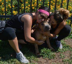 Os animais estão recebendo muito amor e, além de saudáveis, estão também muito felizes. (Foto: Reprodução / San Jacinto Valley Animal Campus)