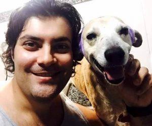 O cão está recebendo toda a atenção e cuidado necessários e já consegue voltar a sorrir. (Foto: Reprodução / Facebook Patas de Rua)