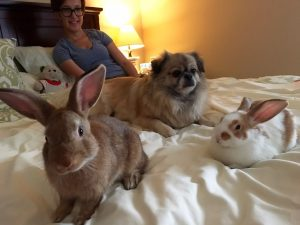 Ele adora ficar pertinho dos coelhos e está sempre dando muito amor e carinho para eles. (Foto: Reprodução / Samantha Tungul)