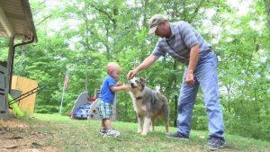 O cão não hesitou em saltar na frente do bebê e levar a picada em seu lugar. (Foto: Reprodução / nbc4i.com)