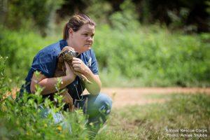 Todos os animais resgatados receberam os cuidados médicos que há tanto precisavam e finalmente saberão o que é ser bem tratado. (Foto: Reprodução / Animal Rescue Corps / Amiee Stubbs)