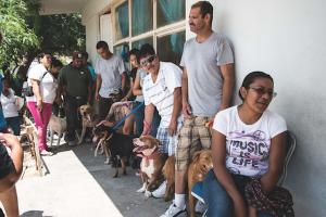 Animais com tutores que não possuem condições financeiras também recebem superte da organização. (Foto: Reprodução / Moncho Camblor)