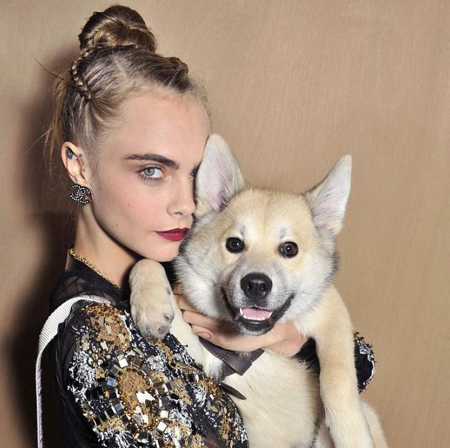 Cara Delinvigne com o cachorro Leo. (Foto: Reprodução / Daily Mail UK)