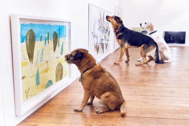 Uma exposição especial para cães. (Foto: Reprodução / Facebook / Dominic Wilcox)