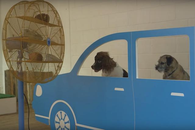 Simulador de carro com vento na cara. (Foto: Reprodução / Facebook / Dominic Wilcox)