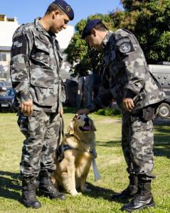 Comandante do BAC Cel Nogueira (direita) na cerimônia de aposentadoria, entregando oficialmente a cadela Luna aos cuidados do CB Strecht (esquerda).