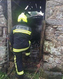 Bombeiros foram chamados para apagar incêndio em celeiro e lá encontraram cinco pequenos filhotes de cães. (Foto: Reprodução / Facebook Newton Abbot Fire Station)