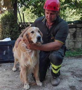O animal foi resgatado pelos bombeiros e não apresentava machucados. (Foto: Reprodução / Alessandro Di Meo / ANSA via AP Photo)