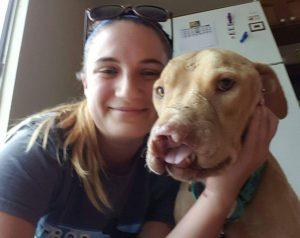 Com a ajuda que está recebendo, o cão está começando a se abrir para os humanos. (Foto: Reprodução / Long Way Home Pit Bull Rescue)