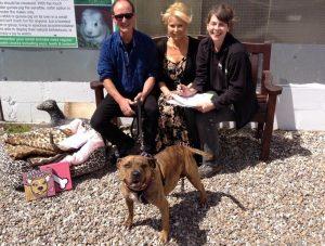 """Além do trabalho, Freya finalmente encontrou uma família que vai lhe dar todo o amor e cuidado que ela sempre mereceu. (Foto: Reprodução / Freshfields Animal Rescue """"Freya's"""" Doggie Diary)"""