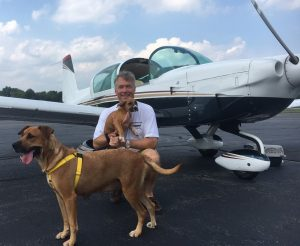 Os cães conseguiram ir para Nova Jersey de avião graças aos pilotos da Pilots N Paws. (Foto: Reprodução / Mr. Bones & Co.)
