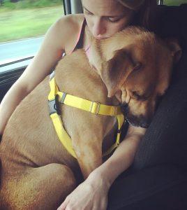 Após tantos anos de negligência, a cadela Nana finalmente conseguiu se sentir segura. (Foto: Reprodução / Mr. Bones & Co.)