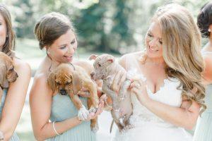 Então, eles decidiram que nas fotos, as damas posariam com filhotes de cães no lugar de buquês de flores. (Foto: Reprodução / Caroline Logan)