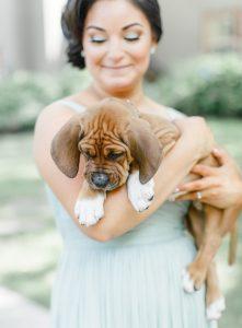 As fotos ficaram lindas e os cães deixaram o momento mais leve, natural e ainda mais cheio de amor. (Foto: Reprodução / Caroline Logan)