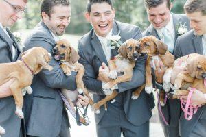 Durante as fotos com os cães não faltou diversão e sorrisos. (Foto: Reprodução / Caroline Logan)