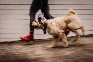 Ela pratica caminhadas e corridas com a sua mamãe. (Foto: Reprodução / Facebook Pérola Carolline)
