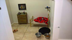 O quarto é bem elegante e possui tudo o que o cão precisa. (Foto: Reprodução / Imgur Fatisbac)