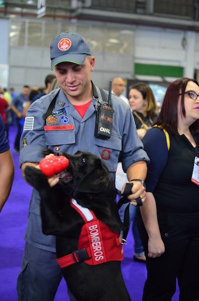 Até os cães do Corpo de Bombeiros marcaram presença. (Foto: Karina Sakita)