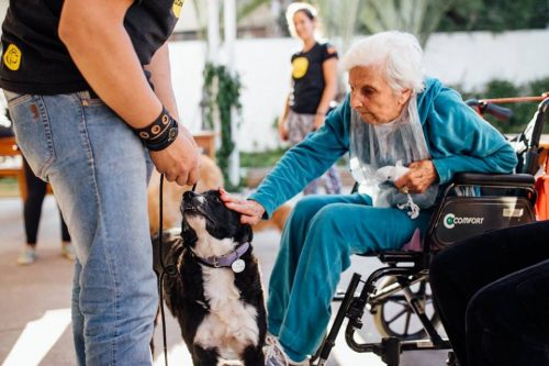 Os benefícios do convívio com os cães também pode ser observado na capacidade motora dos idosos. (Foto: Reprodução / Facebook Cora Residencial Senior)