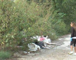 A cadela Hope foi encontrada em uma pilha de lixo em um lixão ilegal.(Foto: Reprodução / The Abandoned Ones)