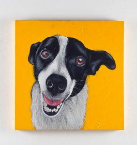As obras foram feitas por Marcos Marques, diretor de arte e artista plástico idealizador do Projeto Art Pet. (Foto: Divulgação)