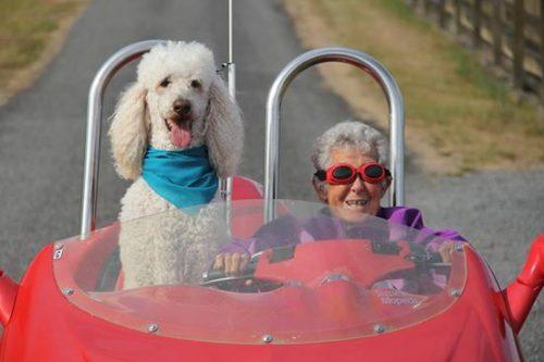 A jornada foi rechada de divertidas aventuras. (Foto: Reprodução / Facebook Driving Miss Norma)