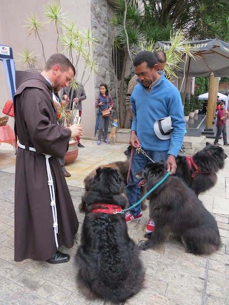 Muitas bênçãos. (Foto: Reprodução / franciscanos.org.br)