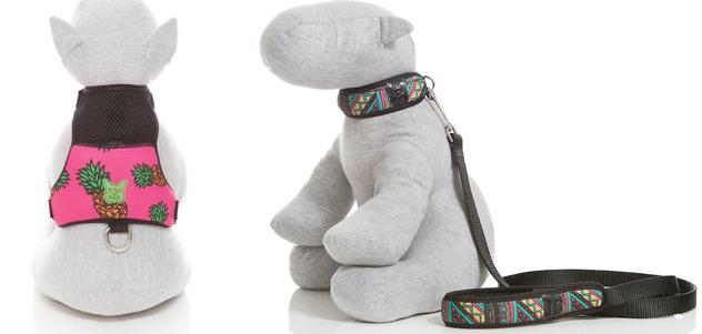 Alguns dos produtos da coleção Tropicália da Dog Club. (Fotos: Divulgação)