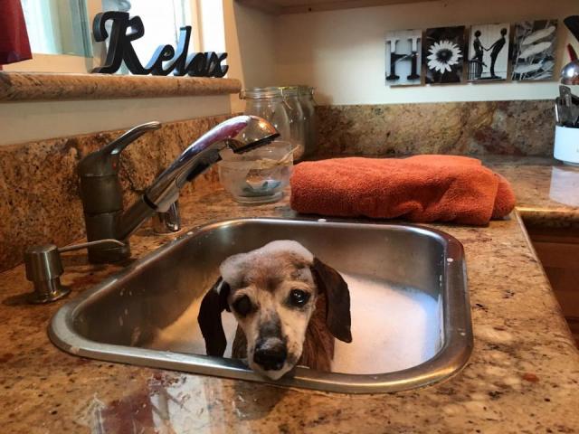 Muneca tomando banho. (Foto: Reprodução / Facebook / Frosted Faces Foundation)