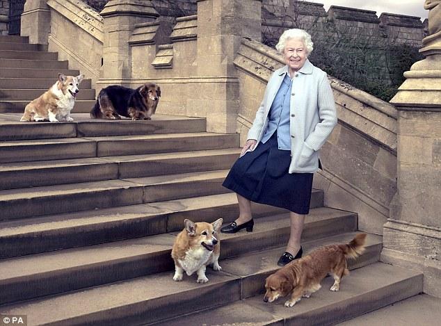 A rainha da Inglaterra acompanhada dos quatro cães durante ensaio fotográfico comemorativo. (Foto: Reprodução / Daily Mail UK)