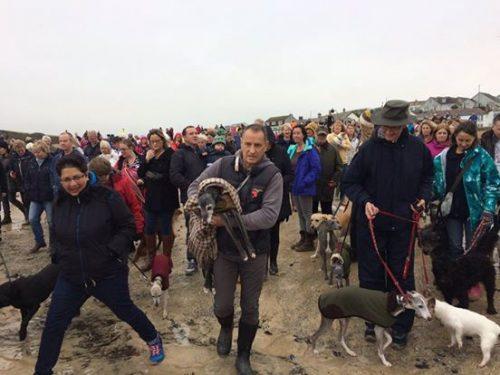 Mark então fez um convite em seu Facebook para que as pessoas acompanhassem o último passeio de Walnut. (Foto: Reprodução / Twitter/@jennffer, @HeidiDavey)