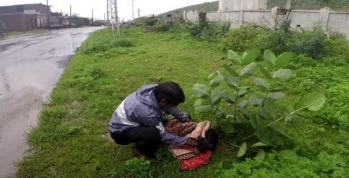 Socorristas do Animal Aid Unlimited resgataram a cadela e a levaram para receber os cuidados necessários. (Foto: Reprodução / Youtube Animal Aid Unlimited, India)