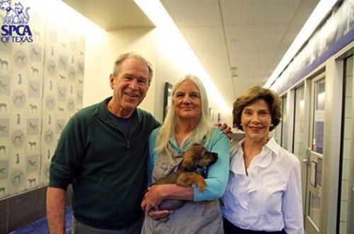 O casal logo se apaixonou por um cãozinho em particular. (Foto: Reprodução / SPCA of Texas)
